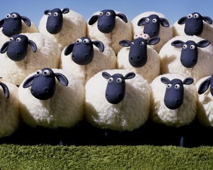 shaun_the_sheep_wallpaper_funny